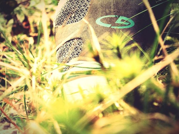 Nature Outdoors Day Close-up Grass EyeEmNewHere Sneakers Activelife