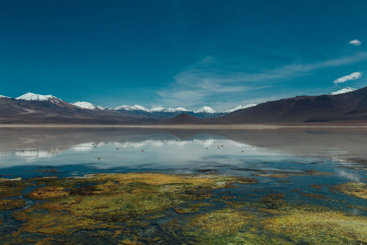 Beauty In Nature Bolivia Day Lake Landscape Landscape_Collection Mountain Mountain Range Nature Nature No People Outdoors Salt - Mineral Salt Flat Scenics Sky South America Tranquil Scene Tranquility Travel Destinations Wanderlust Water