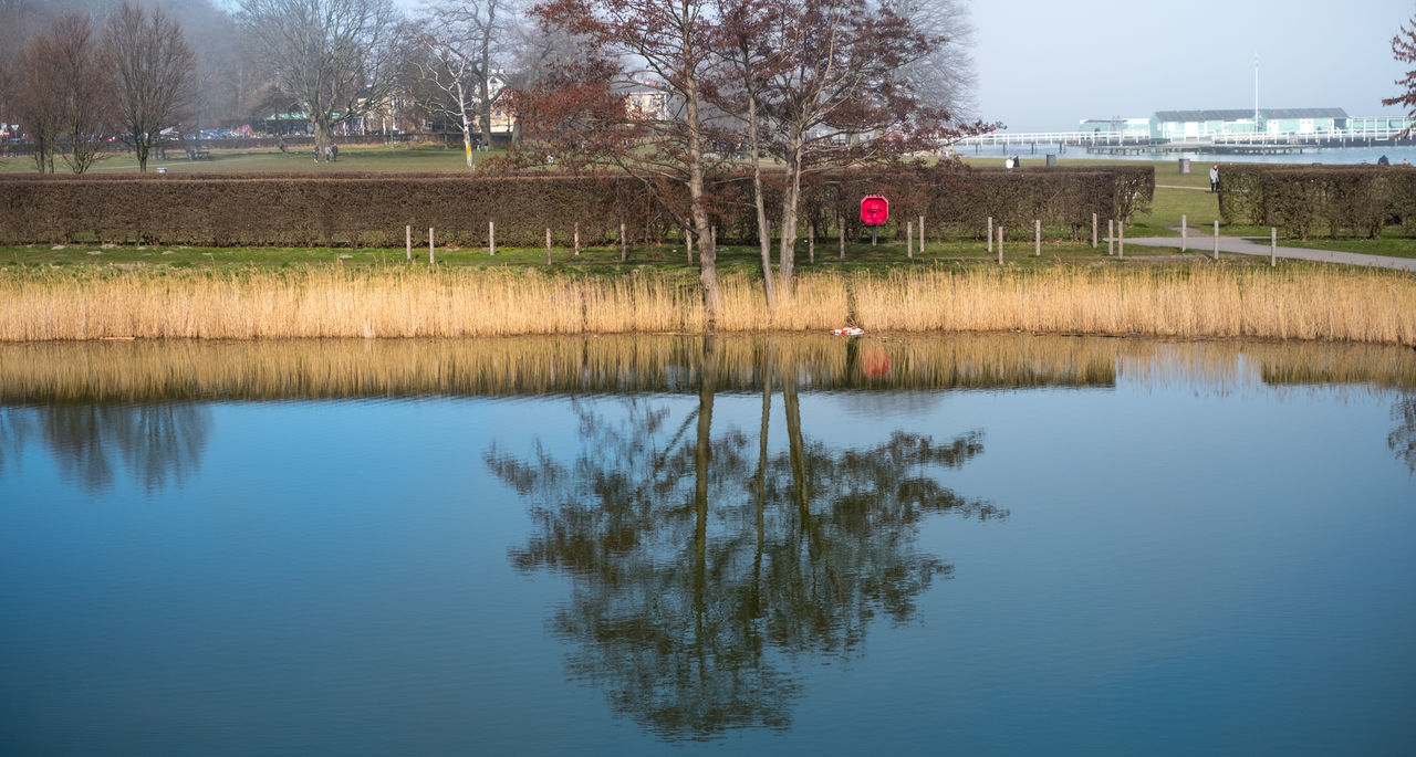 reflection, water, waterfront, day, outdoors, lake, tree, nature, no people, grass, beauty in nature, building exterior, sky, architecture