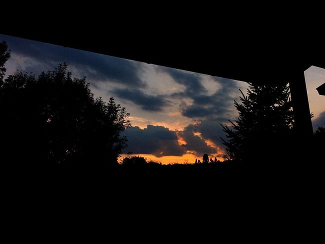 When the sun goes down. Sunset Tree Silhouette Sky Cloud - Sky Nature No People Outdoors Dramatic Sky Scenics Beauty In Nature