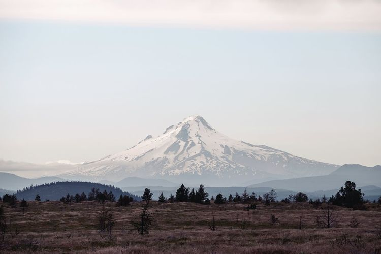 Mt Hood on the way back from Central Oregon. IG @noeldxng Oregon Mountain Snowcapped Mountain Open Outdoors Landscape USA Tree Mountain Snow Snowcapped Mountain Sky Landscape Cloud - Sky Mountain Peak Foggy Rocky Mountains Mountain Range Mountain Road Mountain Ridge Rock Formation Geology Rugged The Great Outdoors - 2018 EyeEm Awards