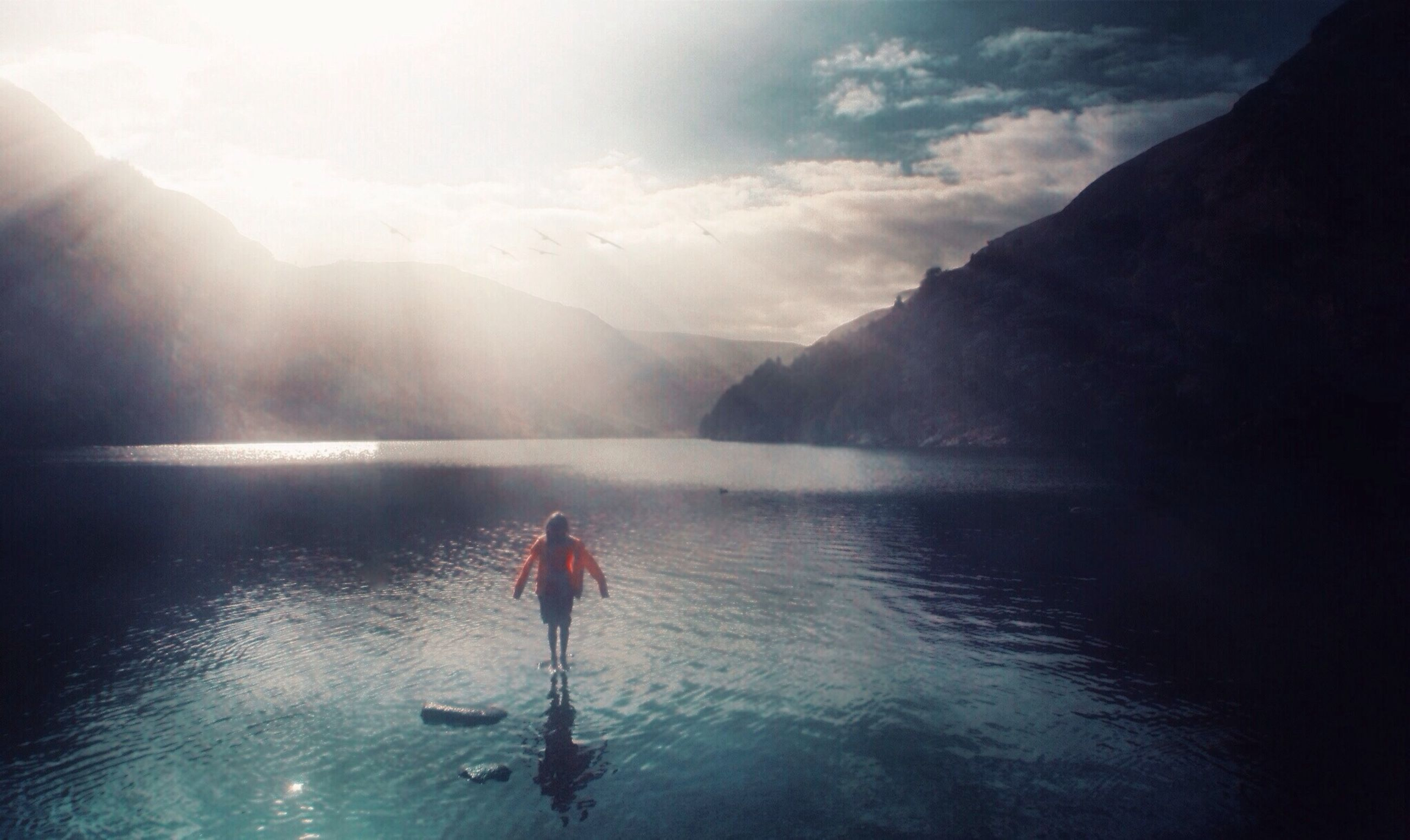 water, mountain, reflection, waterfront, beauty in nature, scenics, one animal, tranquil scene, sea, sky, lake, tranquility, nature, animal themes, idyllic, outdoors, swimming, rippled