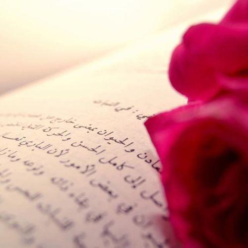 وردة صور صورة_اليوم صوري Pic Photo Arwa_barnawi حكمة خاطرة Imog ImagineDragons Im @princessarwa27