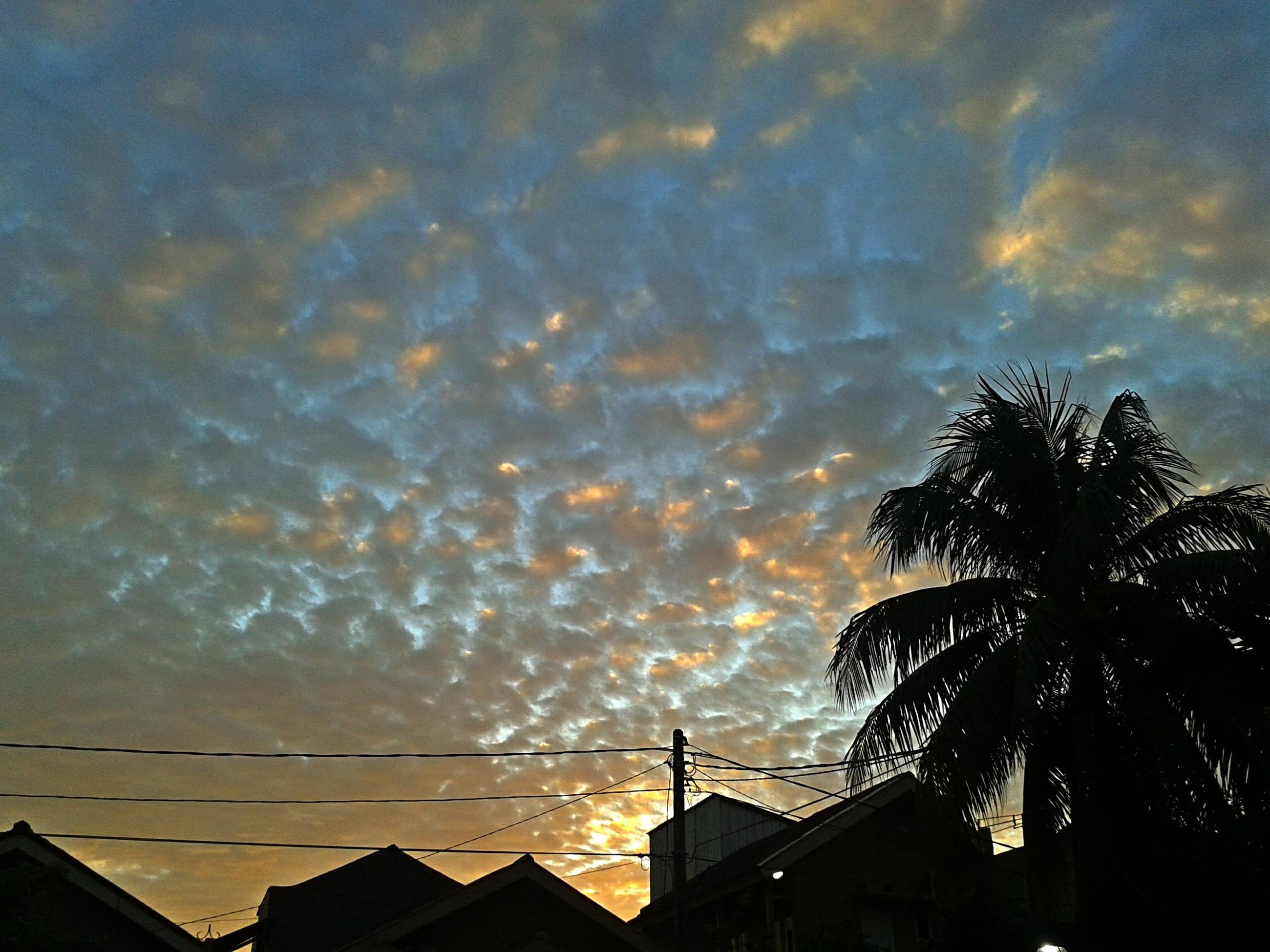 architecture, building exterior, built structure, low angle view, sky, silhouette, house, cloud - sky, tree, high section, sunset, residential structure, power line, cloudy, residential building, building, cloud, palm tree, dusk, outdoors