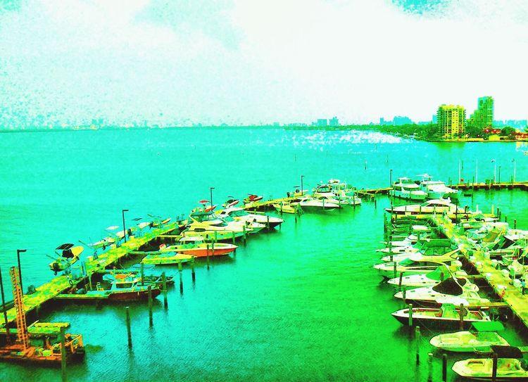 Miami FL Usa 🇺🇸☀️ Miami Heaven 🇺🇸☀️FL Miami Now Check This Out Portrait Of America America