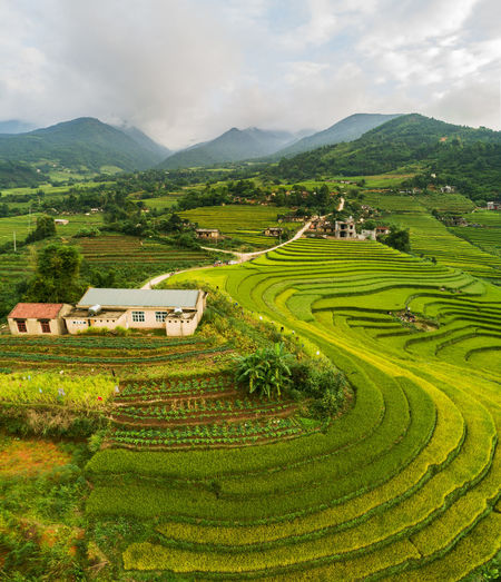 Mountain Agriculture Landscape Rural Scene Green Color Field Scenics - Nature Cloud - Sky Sky Plant Environment Beauty In Nature Farm Mountain Range Tranquil Scene Land Growth Nature No People Tranquility Outdoors Plantation