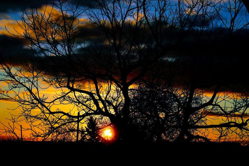 Frankenhardt, Germany Night Nightphotography High Angle View Nature_collection EyeEm Best Shots Silhouette Sunlight Sky Tree Sunset Silhouette Nature Tree Beauty In Nature Reflection Sunlight