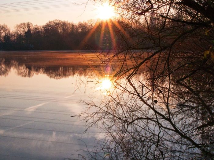 Cold Winter Morning Reflection Beauty In Nature Nature Sun Sunset Tranquil Scene Tranquility Tree Water Sky Bare Tree Idyllic No People Outdoors Sunlight Lake