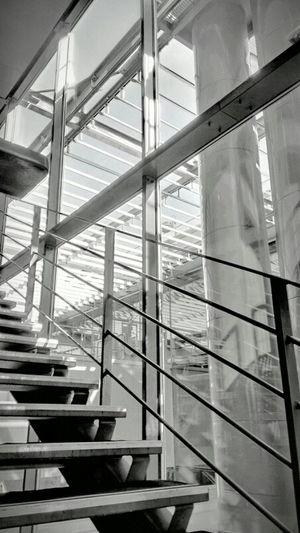 Architecture Blackandwhite Stairs Movies