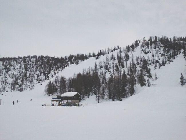 White Mountains White Snow