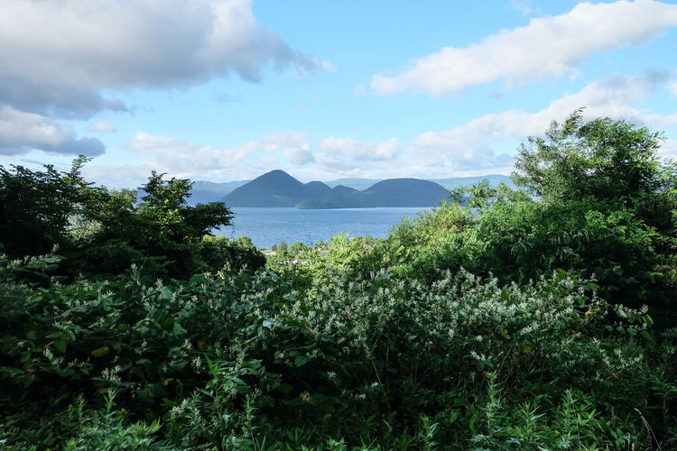 Hokkaido Shikotsu Toya National Park Beauty In Nature Caldera Lake Cloud - Sky Day Green Color Growth Idyllic Lake Toya Land Mountain Nakajima Nature No People Outdoors Plant Scenics - Nature Sea Sky Summer Tranquil Scene Tranquility Tree Water