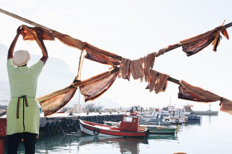 Rear View Of Man Arranging Drying Fish On Bamboos At Harbor