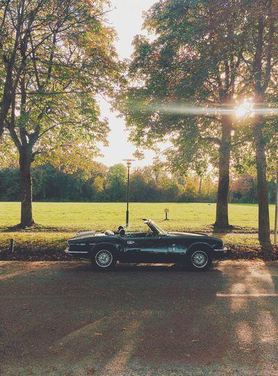 a sunday car! Soloparking Oldtimer Autumn Light