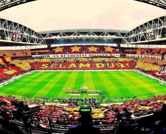 Johan Elmander💛❤ Martin Linnes💛❤ GALATASARAY ☝☝ Galatasaray Cimbom 💛❤️ Felipe Melo💛❤ Garry Rodrigues 💛❤ Muslera💕 Wesley ❤ Jason Denayer💛❤ Lucas Podolski💛❤ Galatasaray Sevdası😍 Emmanuel Eboué💛❤ Fatih Terim💛❤ TolgaCigerci💛❤ Josue💛❤ Yasin Öztekin💛❤ Semih Kaya💛❤ Sinan Gümüş💛❤ Armindo Bruma💛❤ BurakYılmaz💛❤ Hakan Balta💛❤ Sabri Sarıoğlu💛❤ Didier Drogba💛❤ Selçuk İnan💛❤