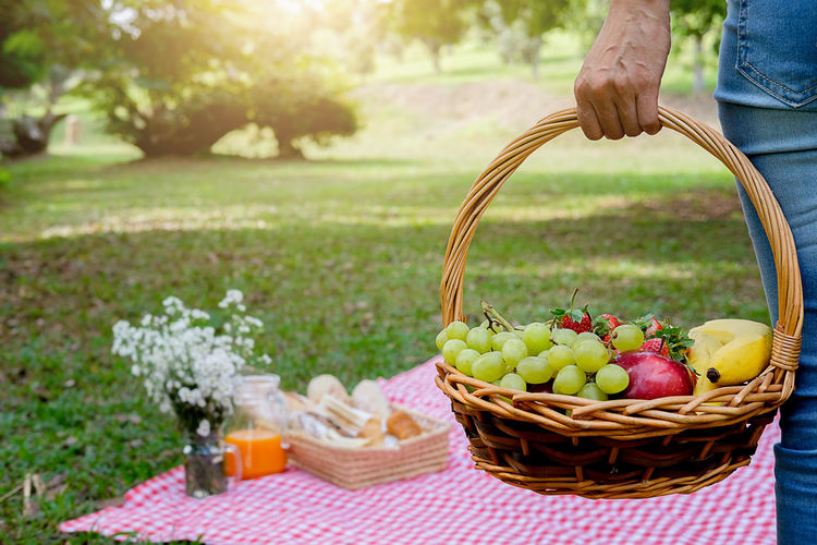 Cropped image of woman holding fruits in wicker basket while standing at park