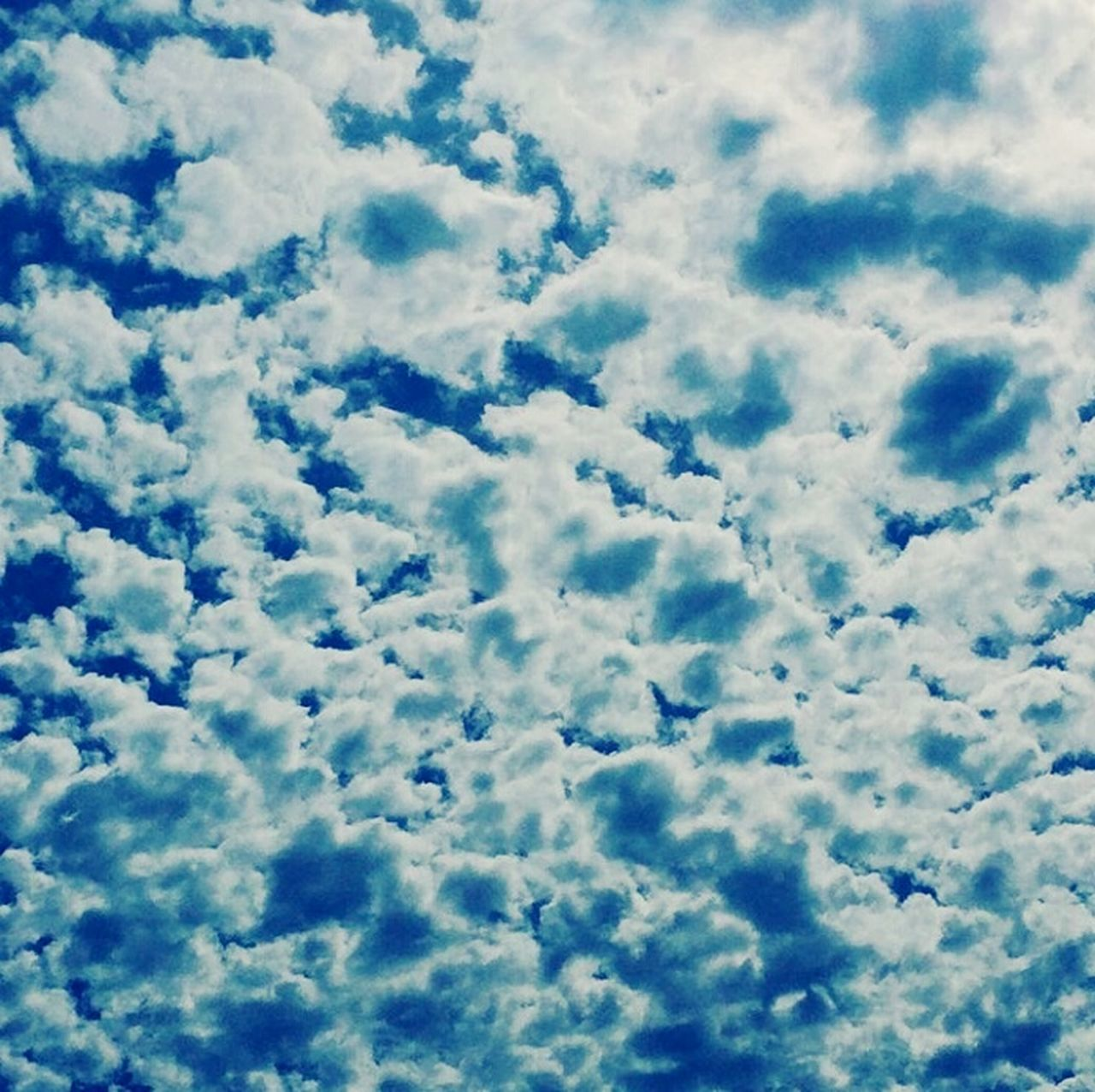 cloud - sky, nature, backgrounds, sky, beauty in nature, cloudscape, softness, sky only, full frame, low angle view, heaven, no people, blue, tranquility, scenics, white color, outdoors, day