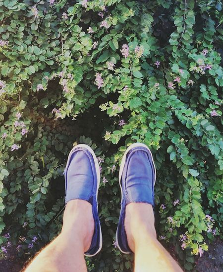Happy feet again. 👣 Eyeemphotography Check This Out Philippines Follow4follow Eyeem Philippines EyeEm Best Shots EyeEm Manila EyeEm EyeEm Gallery Enjoying Life Allin2016 Nature_collection EyeEm Nature Lover Taking Photos Photographic Memory