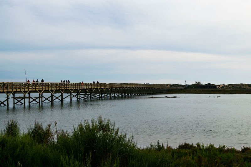 Architecture Beauty In Nature Bridge Bridge - Man Made Structure Built Structure Cloud - Sky Connection Day Nature Outdoors Portugal Algarve Quinta Do Lago Sky Water Wood Bridge In The Sea