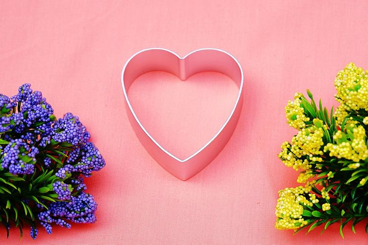 Valentine Day or love concept. Beauty In Nature Celebration Close-up Day Flower Flower Head Fragility Freshness Gift Heart Shape Indoors  Love Nature No People Pink Color Red Romance Studio Shot Table Valentine's Day - Holiday