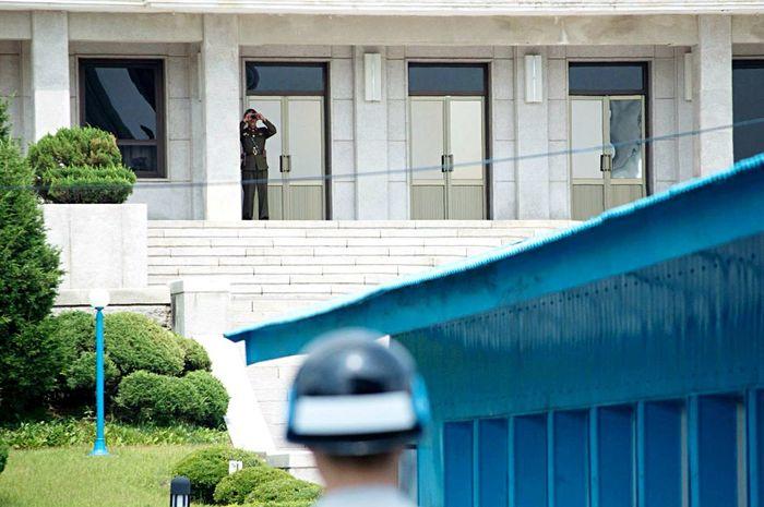 South South Korea North Korea Dmz The Adventure Handbook Brothers The Traveler - 2015 EyeEm Awards Border The Photojournalist - 2015 EyeEm Awards The Moment - 2015 EyeEm Awards