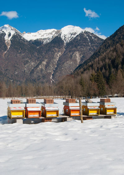 Mountain Cold Temperature Mountain Range Beauty In Nature Snow Nature Transportation Day Winter No People Sky Sunlight Scenics - Nature Mode Of Transportation Tree Non-urban Scene Land Outdoors Plant Snowcapped Mountain Mountain Peak Beehives Bees Hives