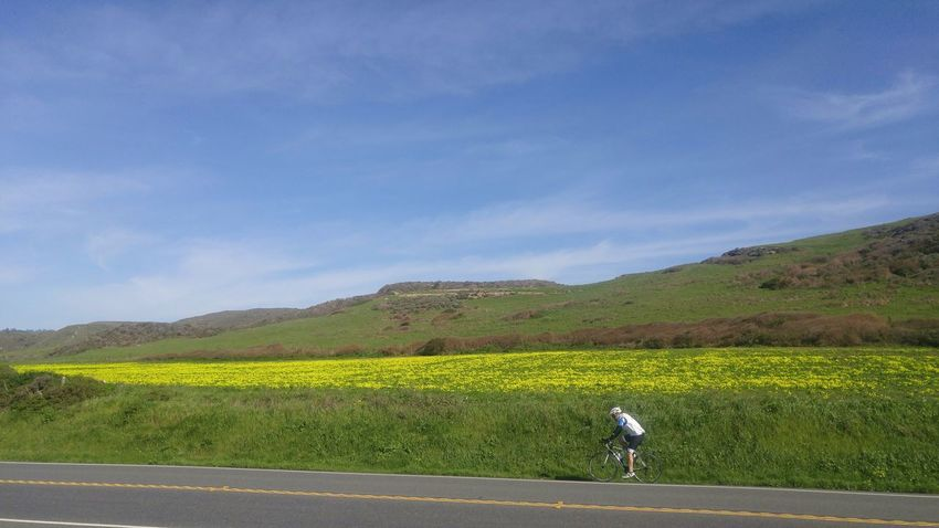Blue Landscape No People Green Color Sky Nature Mountain Day Outdoors Nature_collection Bicycle Bicycling Bicycle Adventures Sports Photography Sports Training Movement Davenport, Ca California Coast Wheels Exercise Excercise Time Workout Healthy Lifestyle Healthy Happy