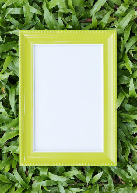 Yellow picture frame on green lawn in top view for the design nature background. Green Color Plant Blank No People Close-up Plant Part Copy Space Leaf Nature Frame White Color Directly Above Growth Picture Frame Still Life Day Paper Beauty In Nature Grass Indoors  Picture Frame Picture Frames Picture Frame Art Yellow Picture Frame Green Lawns