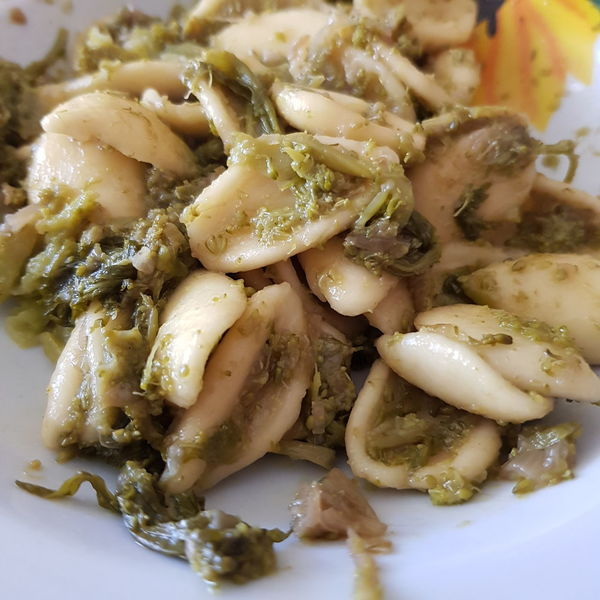 hand made pasta 'orecchiette' Hand Made Pasta Orecchiette Puglia Cime Di Rapa Delicius Apulia Italy Italia Puglia Puglia Italy Carbohydrates Vegan Vegan Food Traditional Food EyeEm Selects Food Food And Drink Healthy Eating Vegetable No People Fungus Close-up