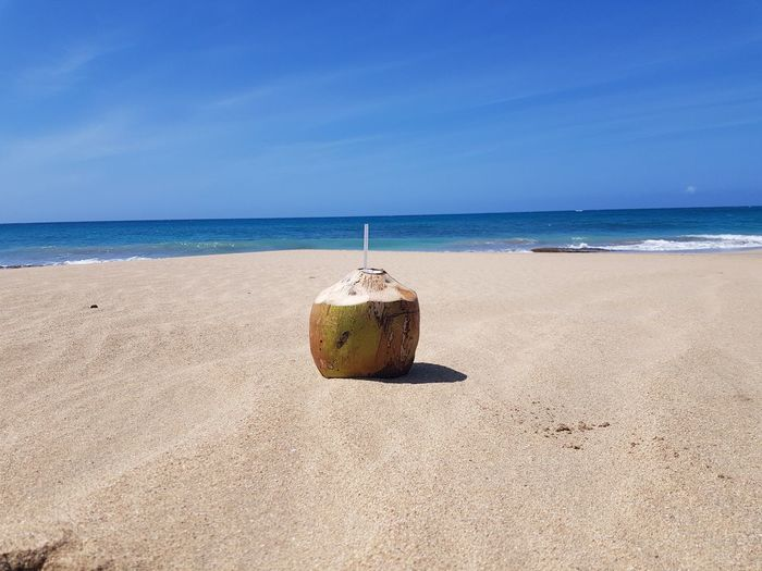 Noix De Coco Coconut Water Sea Beach Sand Summer Sky Horizon Over Water Coconut Tropical Fruit Coconut Palm Tree Starfruit Passion Fruit Beach Umbrella Wave FootPrint