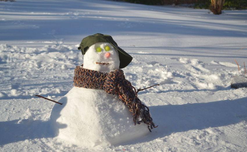 Snowman on field