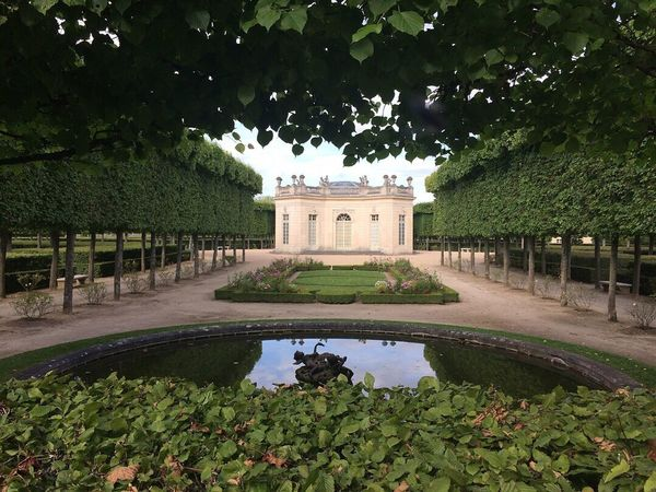Paris, France  Château De Versailles  Versailles Palace Versailles Petit Trianon Tree Built Structure Growth Architecture Plant Green Color Topiary Nature Water Outdoors Day Building Exterior No People Flower Botanical Garden Beauty In Nature Sky