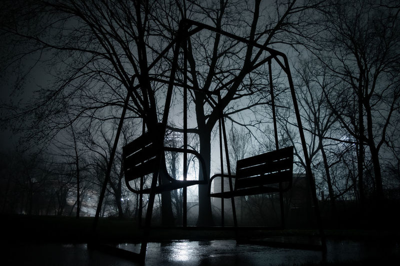 Silhouette of bare trees in park at night