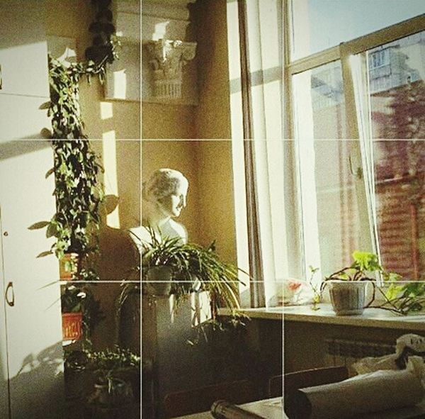 🎨Art Nature Holiday Photography Eyeem Photography Morning Gallery Russia People Arhitecture