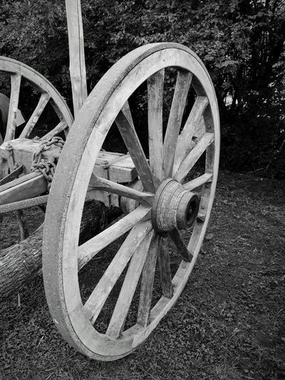 Big Wheel