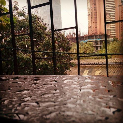 View frm my balcony Rainyseason Enjoyingtherain