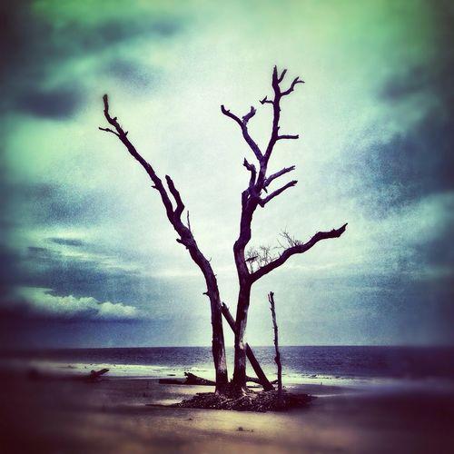Reclaimed beach on a cloudy day.