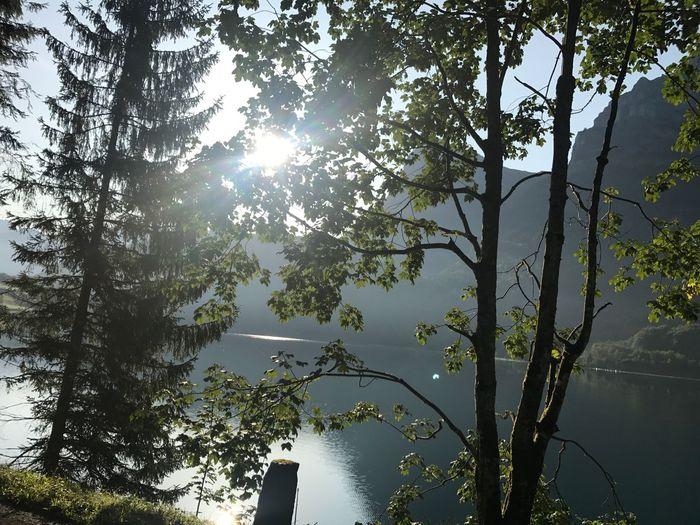 Klöntalersee Schweiz Bergsee Glarnerland Kanton Glarus