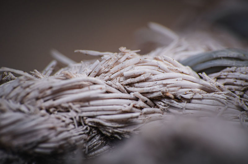 Characteristics of a nylon rope when being outdoors for a long time, close up.