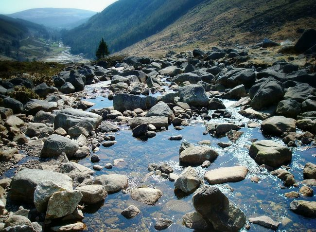 Wicklow mountainsTaking Photos Relaxing Landscape_photography Landscape_Collection Landscape_lovers Nature Photography Nature_collection Naturelovers Landscapes Creekside Creek Creek View Landscape Enjoying Life Water Reflections Water Wicklow Mountains  Wicklowmountains Wicklowgap The Great Outdoors - 2016 EyeEm Awards The Essence Of Summer- 2016 EyeEm Awards Mypointofview Nopeople My Point Of View Tranquil Scene Your Ticket To Europe