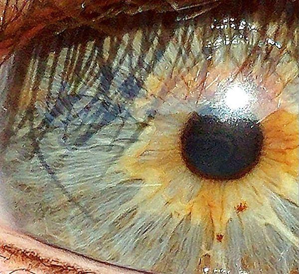 Seat Of The Soul Close-up Eye Close Up Eyes My Eyes ❤ Close-up