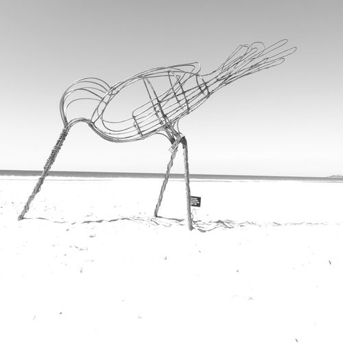 A Bird sculpture on the beach. Bird Sculpture Beach Beachphotography Beach Photography Wading Bird Black & White Black&white Monochrome Photography Giant Sculpture Beak Bird Bill