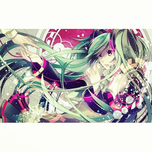 Anime Animegirl Animelover Animecat animekawaii kawaii socute otaku otakulover otakugirl manga mangalover mangagirl nya meow awww vocaloid miku mikuhatsune mikuhitsune hatsune voice japanesegirl japanesemusic