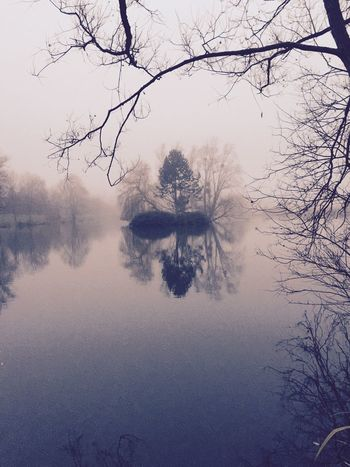 IPhoneography Iphone6plus Reflection Etangs Lake 77 Paysage Nature Landscape Seine Et Marne Lac Brume Brouillard Foggy Day Foggy Fog Sky