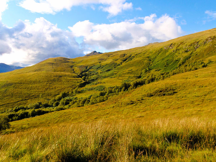 Scotland Beauty In Nature Ben Lomond Cloud - Sky Day Grass Landscape Mountain Mountain Range Munro Nature No People Outdoors Scenery Scenics Sky Tranquil Scene Tranquility