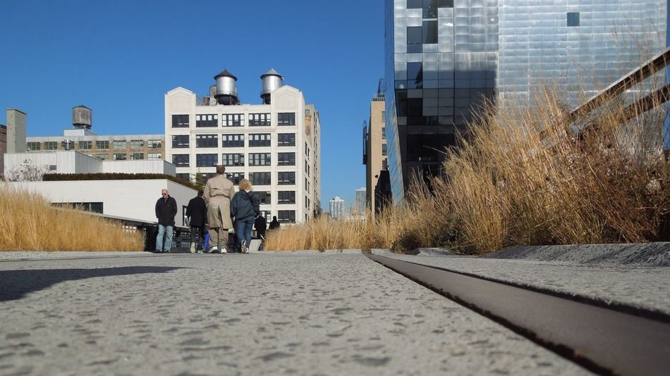 High Line Park High Line High Line Park, Nyc NYC Nycstreetphotography