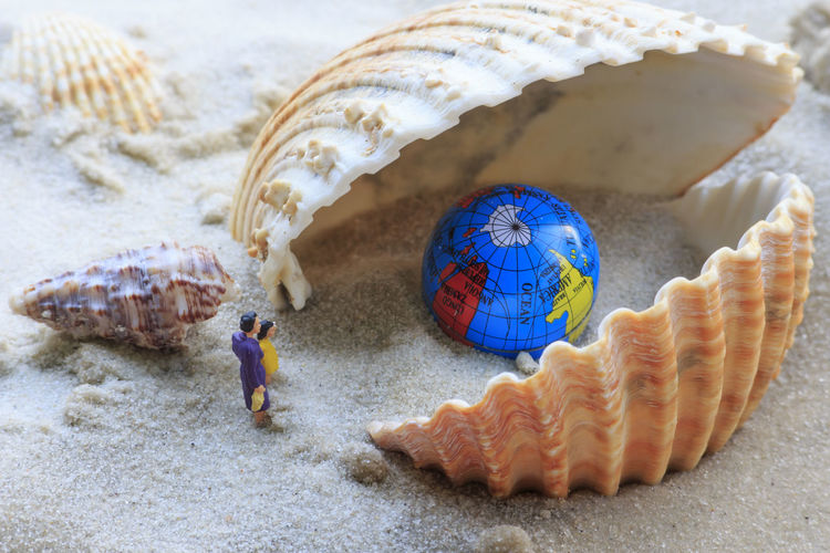 Close-up of seashell with figurine and globe on beach