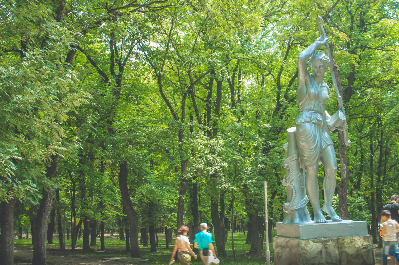 tree, statue, sculpture, human representation, growth, nature, park - man made space, day, outdoors, green color, tree trunk, beauty in nature, branch, no people