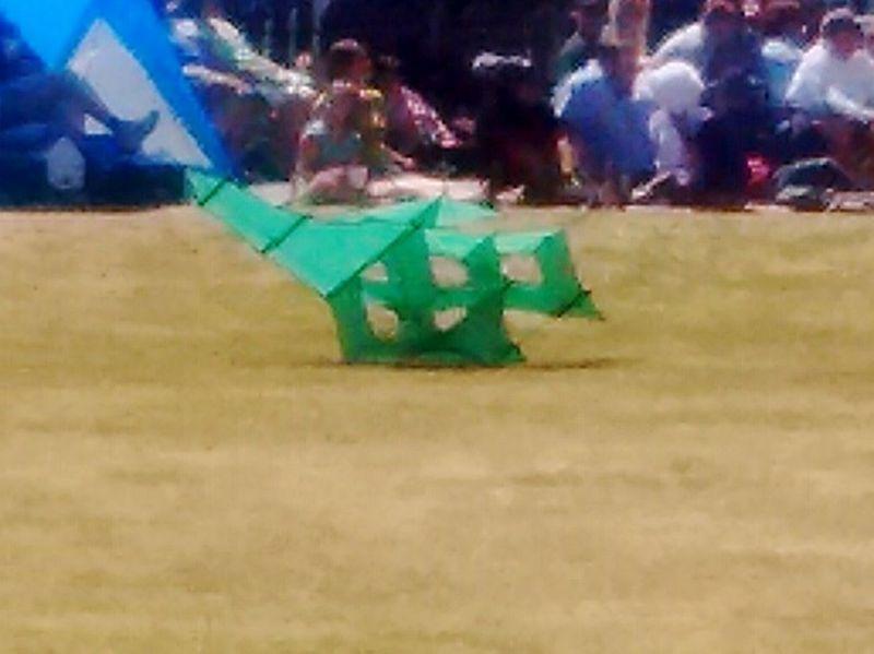 Box kites, kites,