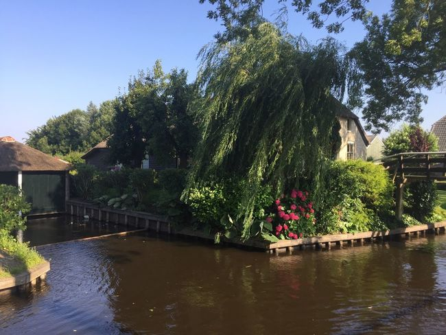 Giethoorn Hollande Plant Water Tree Nature Architecture Sky Built Structure