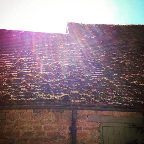 Raise the roof. @lifeprompts OpenEdit Travel Beauty Englishcountryside Explore Create Inspiration EyeEm Gallery